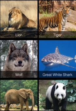 Download Animal Encyclopedia 1.0 APK File for Android