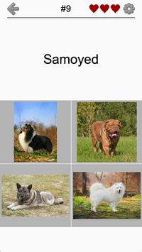 Download Dogs Quiz - Guess Popular Dog Breeds on the Photos 1.0 APK File for Android
