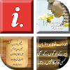 Best Urdu Status 2018 APK