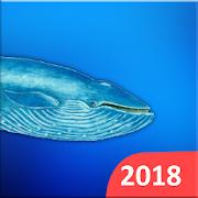 Blue Whales 2018 APK