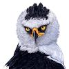 Aves de Costa Rica APK