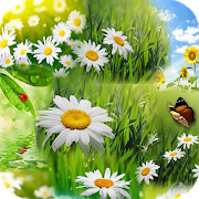 Spring Wallpaper HD APK