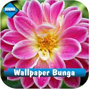 Wallpaper Gambar Bunga Cantik APK