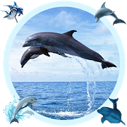 Blue Whale Picture Editor 1.0 Android Latest Version Download