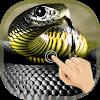 Magic Touch Cobra Attack APK