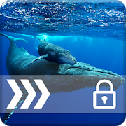 Blue Whale PIN Security Lock 1.0 Android Latest Version Download