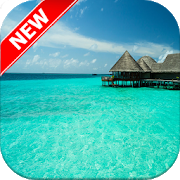 Tropical Wallpapers APK