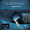 Blue whale VR APK
