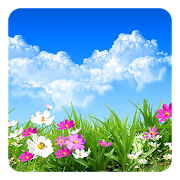 Flower Spring Live Wallpaper APK