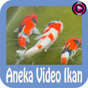 Aneka Video Ikan APK