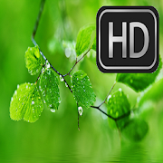 HD Wallpapers for Huawei APK