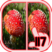 Find Difference mushroom 1.16 Android Latest Version Download