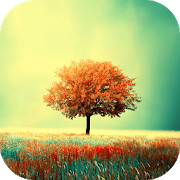 Awesome-Land Live wallpaper HD : Grow more trees APK