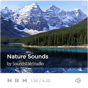 Nature Sounds -Tension Relieve APK