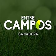 Entre Campos APK