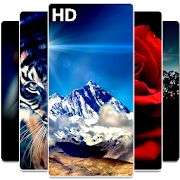 Best HD Wallpapers Backgrounds APK