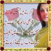 Romantic Urdu Poetry 2016 APK