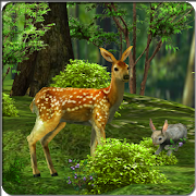 3D Nature Live Wallpaper 1.1 Android Latest Version Download