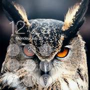 Owl Lock Screen Pass Code APK
