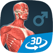 Human body (male) educational VR 3D 1.18 Android Latest Version Download