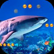 3D Angry Shark APK