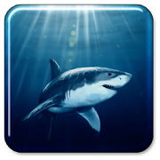 Shark Live Wallpaper APK