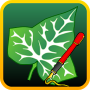 Ivy Draw: Vector Drawing APK