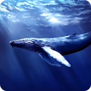 Blue Whale Revange 1.0 Android Latest Version Download