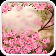 Spring Flowers Live Wallpaper APK