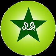 Pakistan Cricket Scores APK
