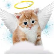 Cat Videos APK