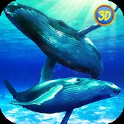 Whale Family Simulator