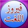 Urdu to Urdu Dictionary APK