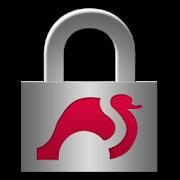 strongSwan VPN Client APK