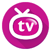 Orion TV APK
