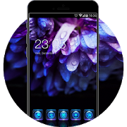 Purple Flower Theme: Beautiful Night Wallpaper HD APK