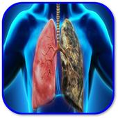 How to Fight Lung Inflammation  Latest Version Download