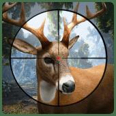 Deer Hunting 19