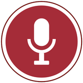 Voice Recorder  APK 3.08