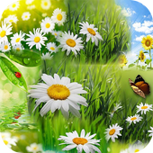 Spring Wallpaper HD 1.01 Latest Version Download