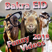 Bakra EID Funny Videos 2018  For PC