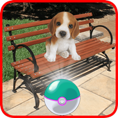 Pocket Puppy Pet Go!