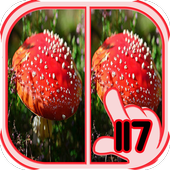 Find Difference mushroom 1.16 Android for Windows PC & Mac