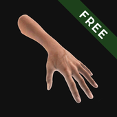 Hand Draw 3D Pose Tool FREE  Latest Version Download