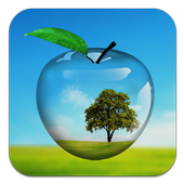 PiP camera. Picture in picture collage maker 1.3.1 Android for Windows PC & Mac