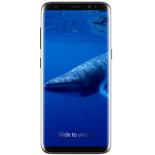 Blue Whale APK 1.0