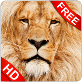 Download Animal Sounds 7.7 APK File for Android