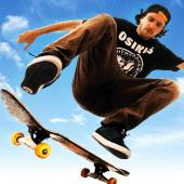 Skateboard Party 3