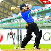 Pakistan Cricket T20 League 2019: Super Sixes APK v1.0 (479)