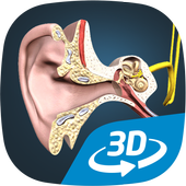 The mechanism of hearing educational VR 3D  Latest Version Download
